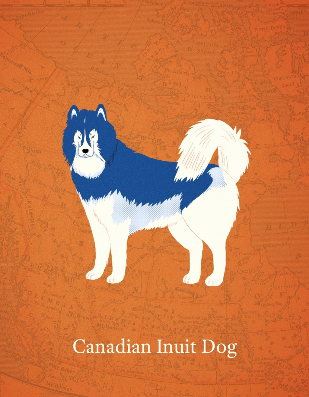 Canadian Dogs by Mika Senda