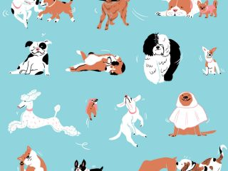 Dog Pattern Design