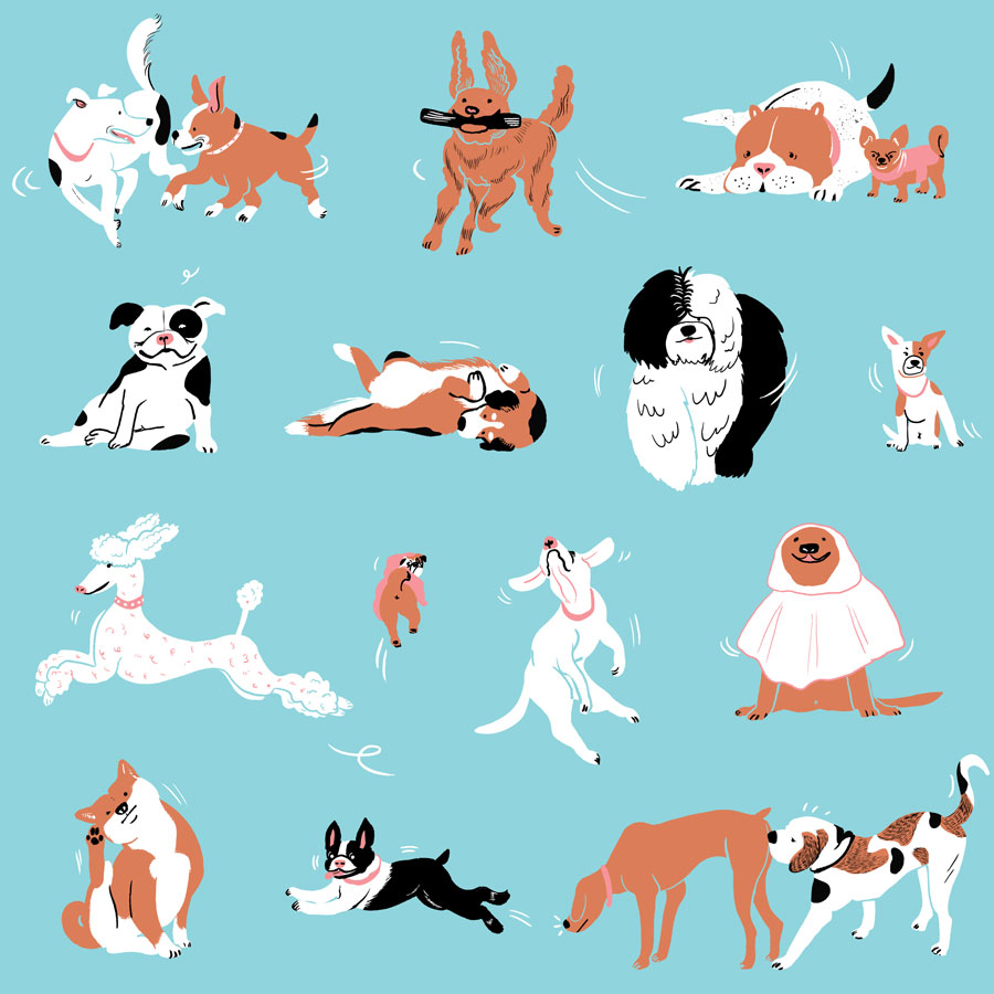 Dogs, Dogs, Dogs! by Mika Senda Illustration