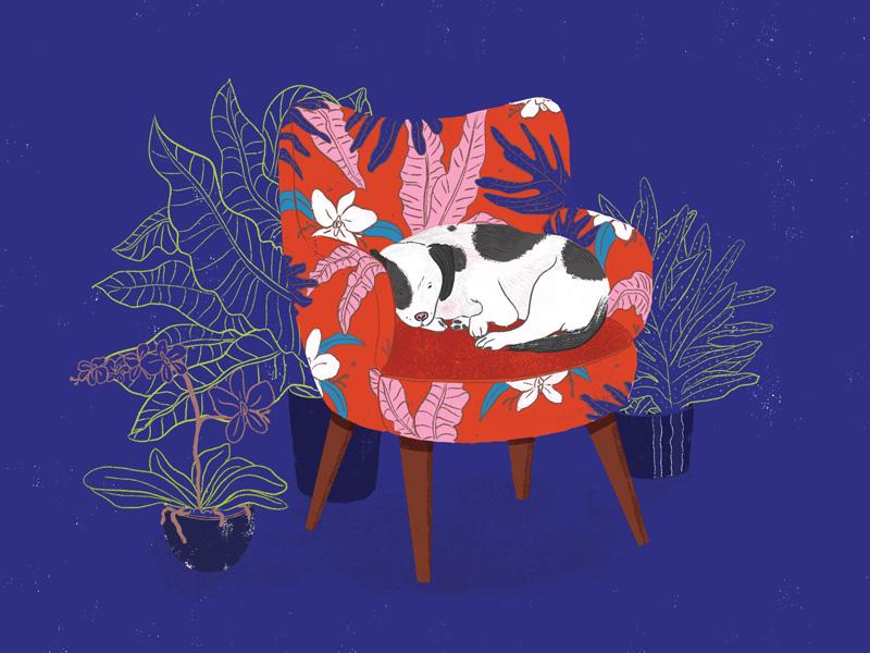 Sleeping Dog in Armchair Laptop Skin, by Mika Senda Illustration