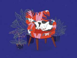 Sleeping Dog in Armchair