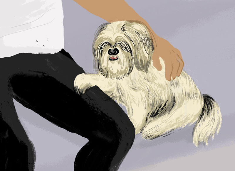 Vancouver Loves Their Dogs, by Mika Senda Illustration
