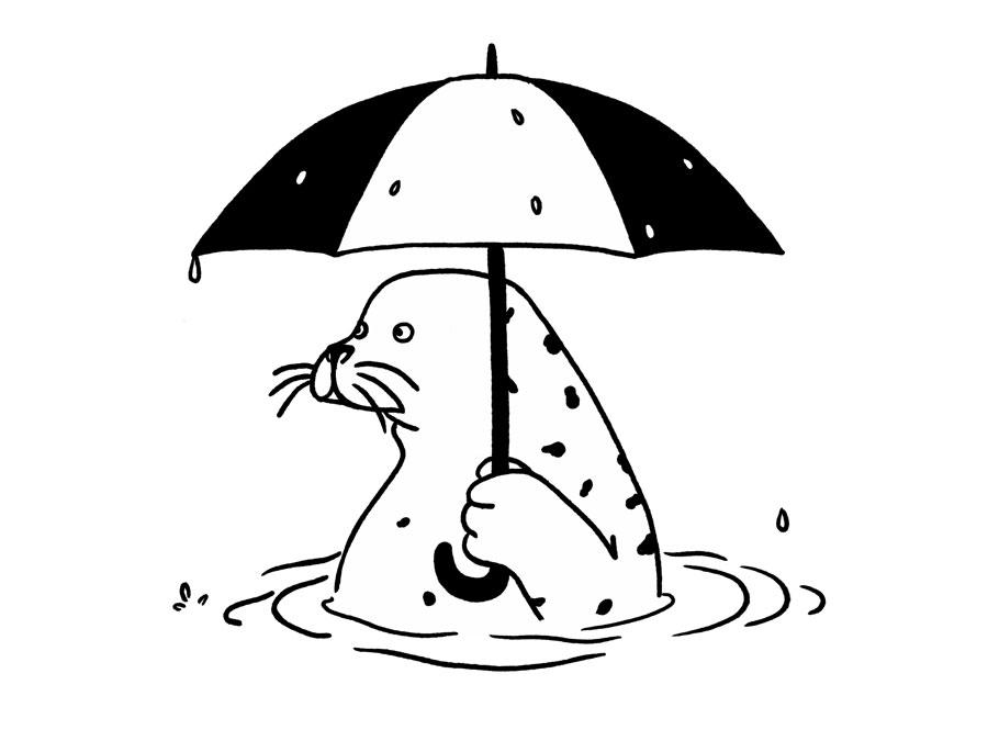 Vancouver Seal by Mika Senda Illustration